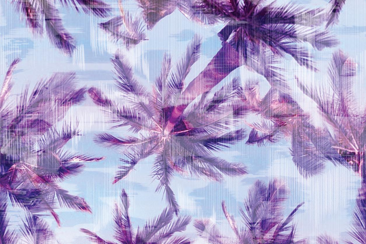 palm tree print design for swimwear
